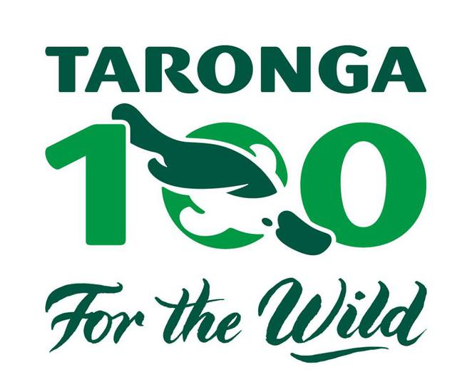 Image courtesy of the Taronga Park Zoo Facebook page