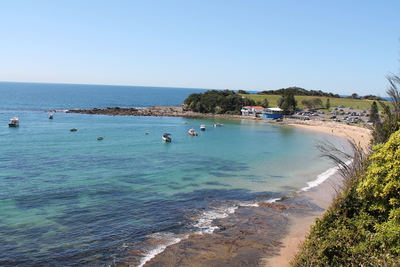 This coastal gen is situated up over the hill beside Terrigal beach