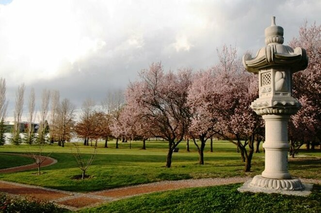 Twelve romantic spring picnic spots in Canberra
