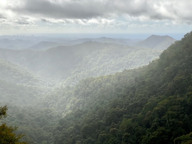 Some days the rainforest can't decide between sun and rain, but it is always cooler up in these mountains than the coast