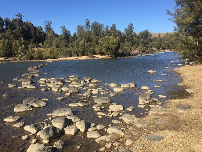 uriarra crossing, canberra, river swimming, ACT, murrumbidgee river, swimming, dog friendly,