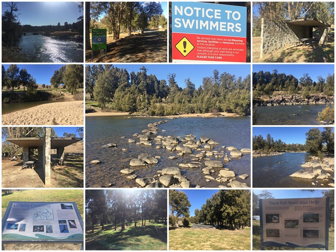 uriarra crossing, river swimming, canberra, murrumbidgee river, BBQ areas, ACT, dog friendly,
