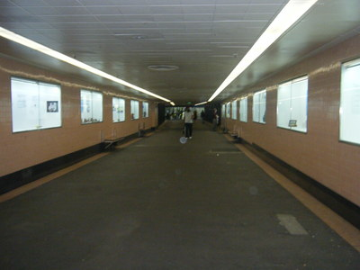 Campbell Arcade is one of the main display spaces for artwork from the Platform initiative.