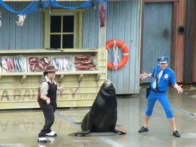 Fish Detectives Sea Lion Show