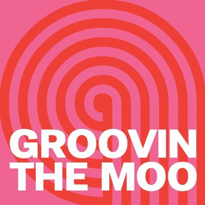 Image appears courtesy of Groovin the Moo