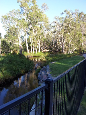 The creeks in Chancellor Park