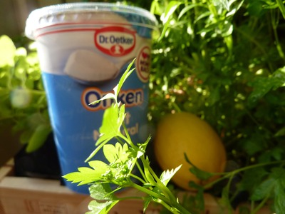 Showing off by using my home grown fresh herbs