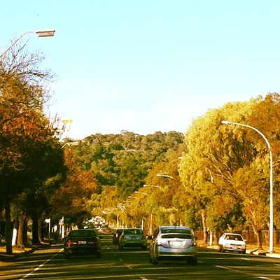 adelaide hills, nature, winter, beauty, road trip, travel