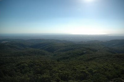 View From Mount Lofty Summit