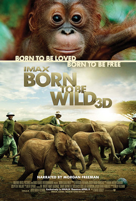 Born to Be Wild 3D Promotional Poster