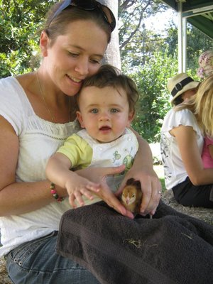 Top 10 autumn family friendly events melbourne baby chicks at ripponlea easter fun day 2010 negle Images