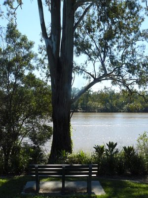 Park bench by the river