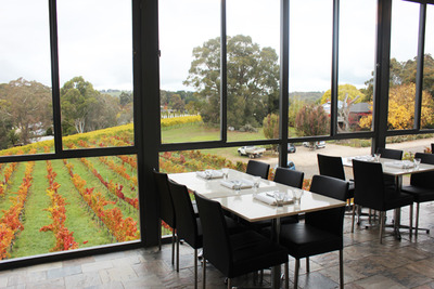 Hahndorf Hill Winery Glass Walled Tasting Room