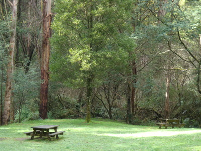 Moonlight Creek Picnic Ground