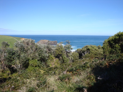 First glimpse of Bushranger Bay from the path