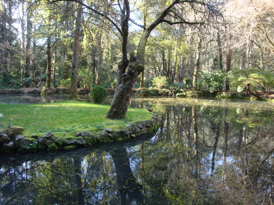 Alfred Nicholas Gardens is a great spot for a peaceful day trip