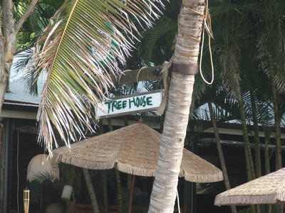 Treehouse on Belongil