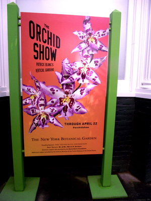 Orchid show the new york botanical garden new york - New york botanical garden tickets ...