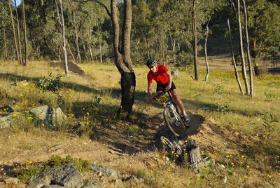 Mountain Bike Victoria Evening Competition (c) MBV (Source: MBV website)