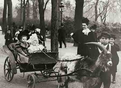 No matter how you dress it up, no goat carriages in Melbourne! (Flickr)