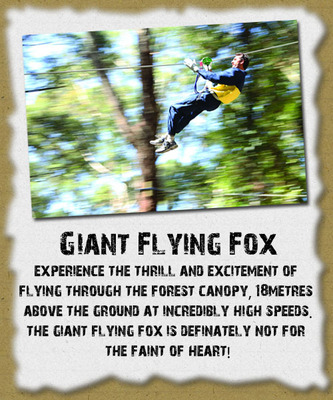 CWS Flying Fox