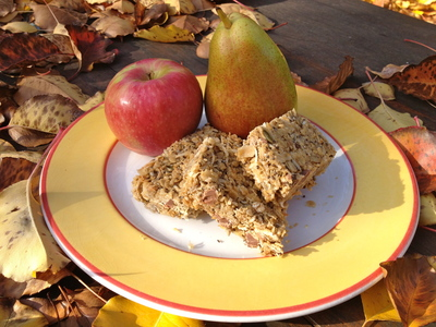 Yummy Muesli Seed Bars (c) JP Mundy