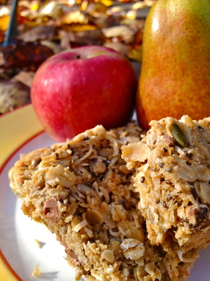Easy Muesli Seed Bars (c) JP Mundy