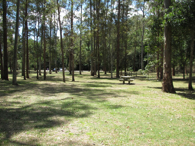 Rose Gum Picnic Area photo by West End Girl