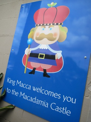 macadamia castle photo by michelle macfarlane