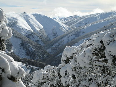 Mt Hotham by Chris Solnordal, Wikipedia Creative Commons