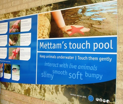 Mettam's Touch Pool at AQWA