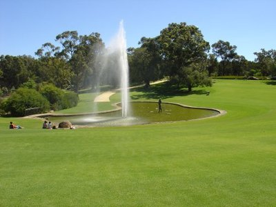 Image Courtesy of Kings Park Website