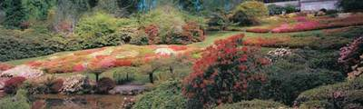 Rhododendron Gardens courtesy of Victoria Parks website