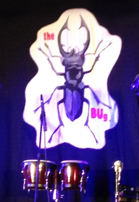 The BUg at New Farm Bowls Club