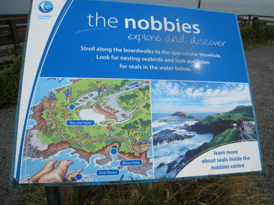 Image result for the nobbies phillip island