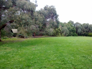Field in Valley Reserve
