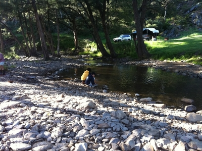 Gold panning at Ophir Reserve