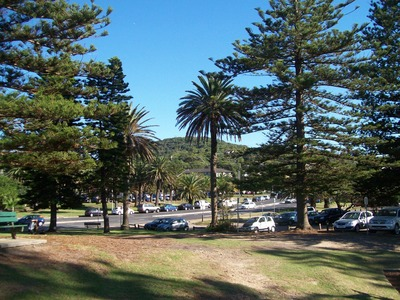 Avalon Beach & Playground