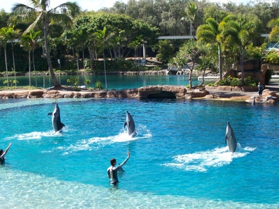 Sea World, Gold Coast