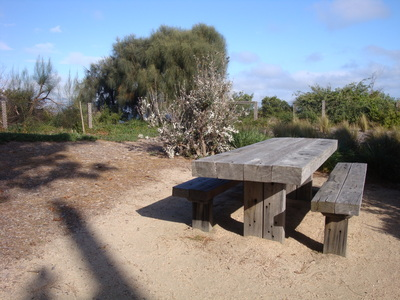 Picnic tables along the walk