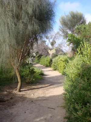 The walking trail